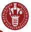 UCPH_logo.JPG